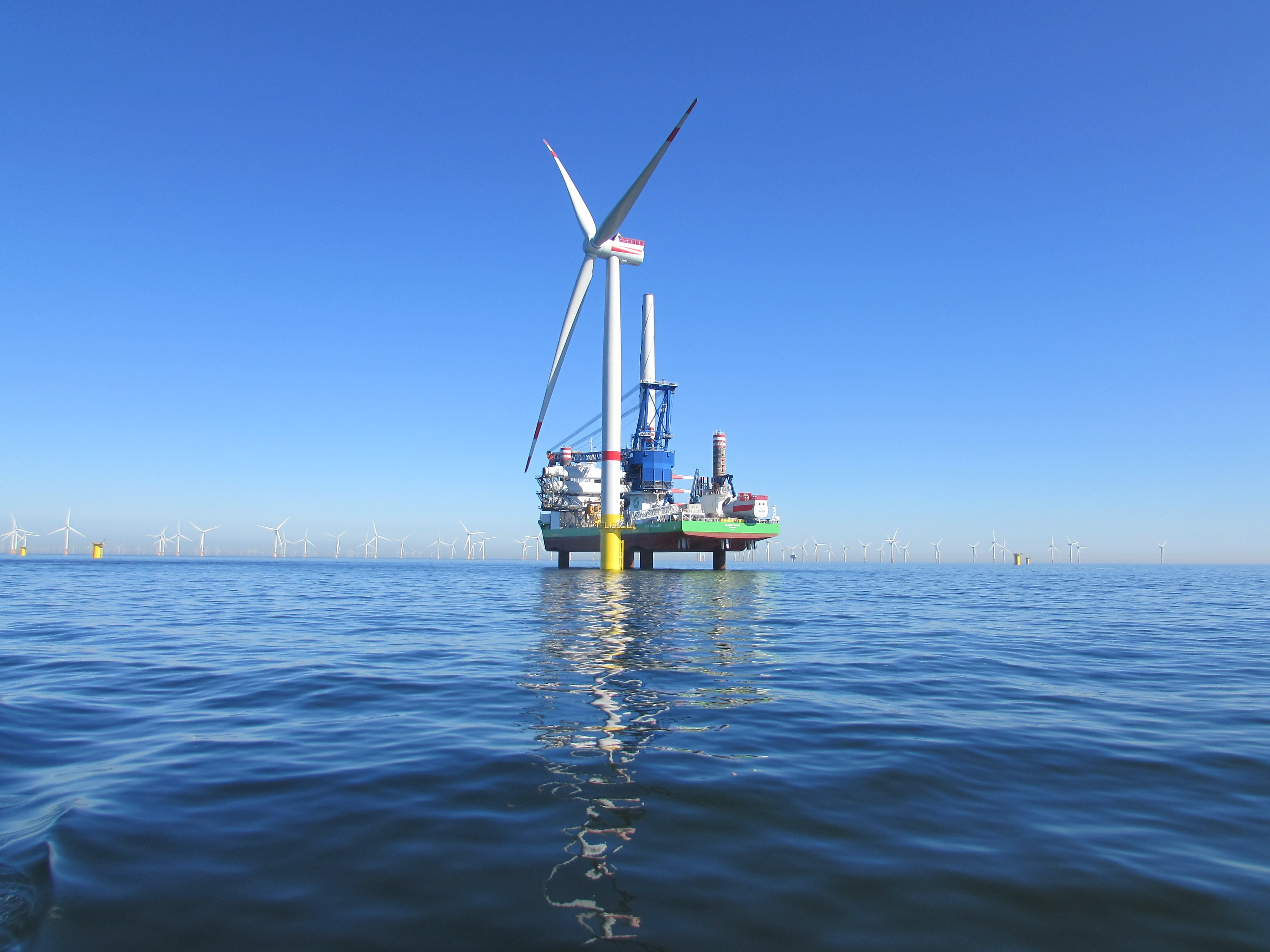 Turn our North Sea into a blue power plant